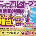 ガイア今福鶴見店(2014年3月7日リニューアル・大阪府)