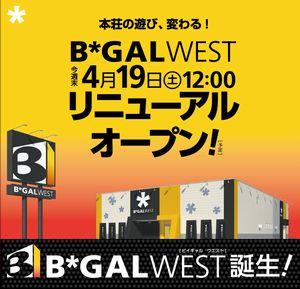 akita_140417_b-gal-west