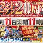 グランドプラザ東店(2014年11月11日リニューアル・愛知県)