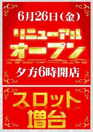 aichi_150626_lucky-plaza-oobu_R