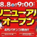 REX荒川沖店(2015年8月8日リニューアル・茨城県)