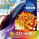 K'ZONE鳳(2015年12月8日リニューアル・大阪府)