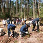 ひぐちグループ、新入社員と植樹祭を実施