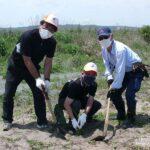 日遊協東北支部、東松島市の植栽地域でクロマツ600本を植栽